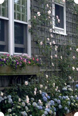 We also provide seasonal care for your Nantucket property